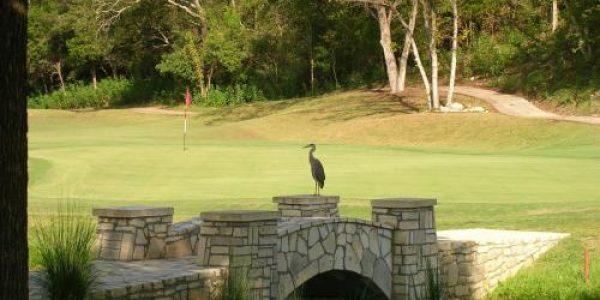 cf-golf